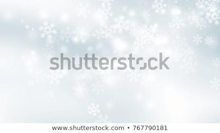Uzay Noel kar mavi gökyüzü Stok fotoğraf © romvo