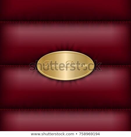 Winter beneden jas Rood warm vector Stockfoto © Iaroslava