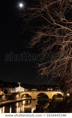 cafe · nacht · verona · Italië · huis · muur - stockfoto © givaga