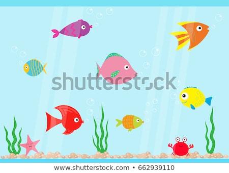 Cartoon vis bubbels icon glimlach achtergrond Stockfoto © NikoDzhi
