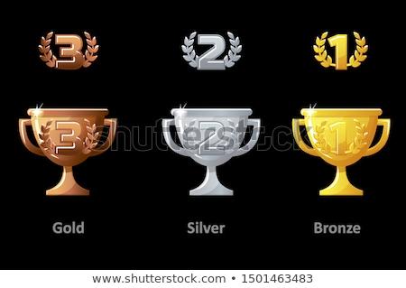 Dourado vencedor isolado distintivo conjunto Foto stock © studioworkstock