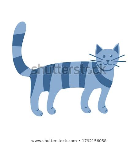 őrült csúnya macska rajz illusztráció néz Stock fotó © cthoman