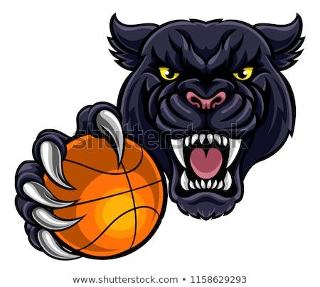 Black Panther Holding Basket Ball Mascot Stock photo © Krisdog