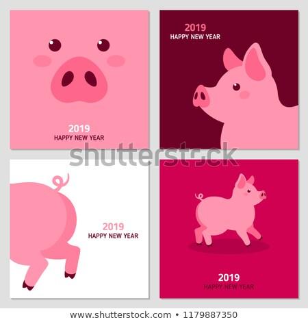 Ano novo porcos moderno vetor desenho animado Foto stock © Decorwithme