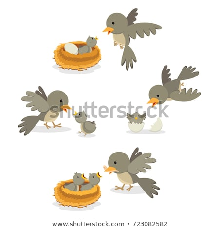 father with young child feeding birds vector isolated illustration stock photo © pikepicture