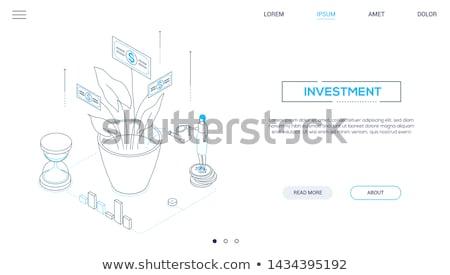 investering · moderne · kleurrijk · isometrische · paars · zakenvrouw - stockfoto © decorwithme