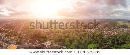 Houses and rice terraces seen from above with a drone in Ubud, Bali, Indonesia Stock photo © galitskaya