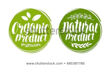 Logo Inschrift grüne Blätter isoliert Vektor Stock foto © robuart