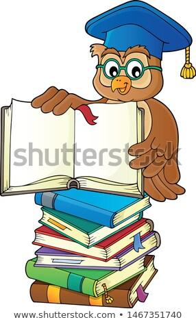 Stock fotó: Bagoly · tanár · nyitott · könyv · kép · könyv · iskola