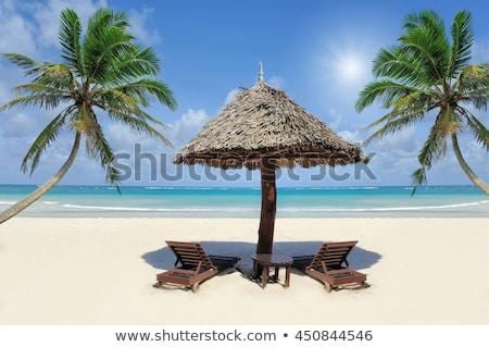 Piękna tropikalnej plaży słomy parasol dłoni plaży Zdjęcia stock © galitskaya