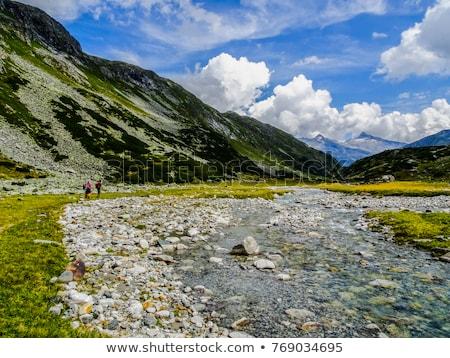 manzara · dağ · vadi · alpler · görmek · güzel - stok fotoğraf © lichtmeister