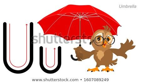 English alphabet picture letter for children. English language abc. Owl bird holds an umbrella Stock photo © orensila