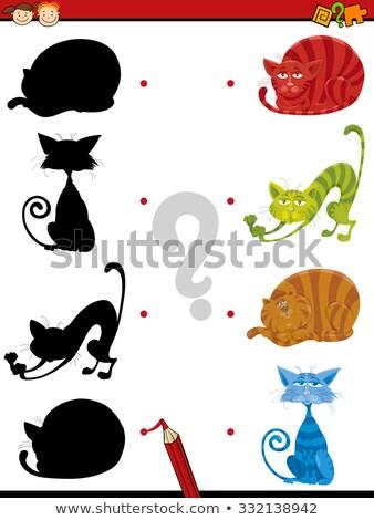 образовательный тень задача смешные кошек Сток-фото © izakowski