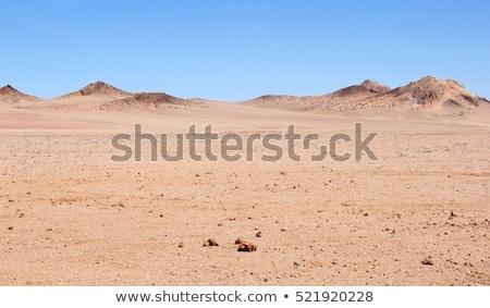 empty desert Stock photo © pancaketom