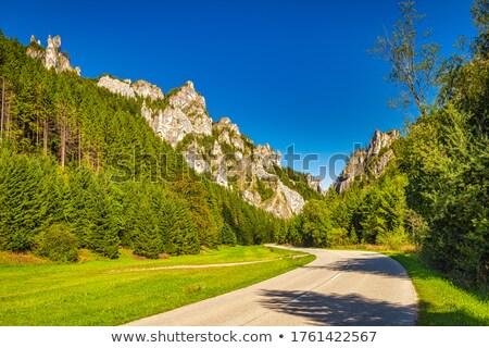 Slovakya manzara seyahat dağlar sütun açık Stok fotoğraf © phbcz