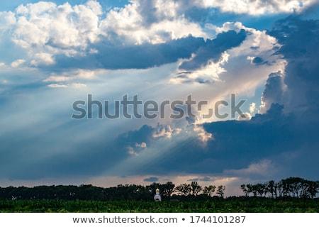 Religieuze kruis wolken hemels stralen Stockfoto © Balefire9