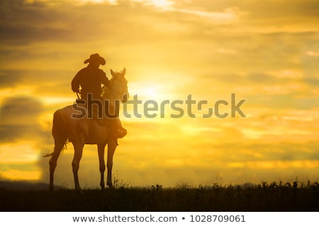 Wild west.  Young cowboy Stock photo © Dazdraperma