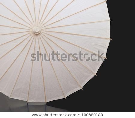 guarda-chuva · isolado · branco · textura · madeira - foto stock © homydesign