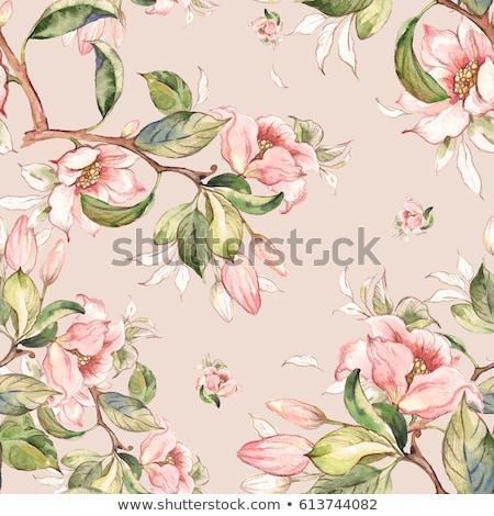 Vintage magnolia fleurs printemps main Photo stock © 0mela