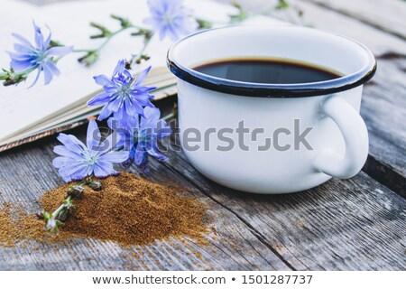 Blue chicory stock photo © yul30