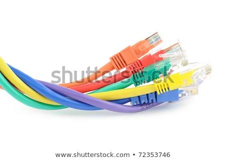 Multi colored computer network cables Stock photo © sqback