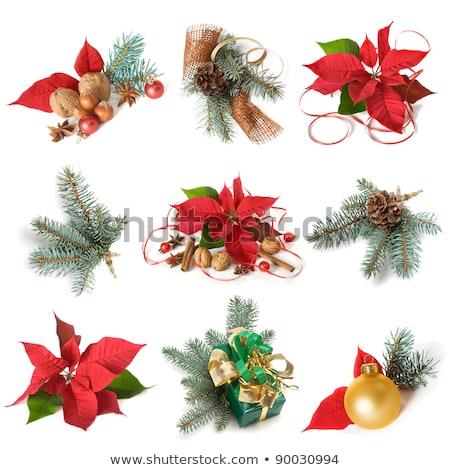 Natal decoração canela anis vermelho macro Foto stock © juniart