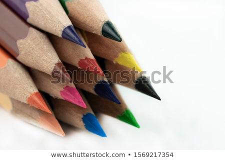 ceruzák · izolált · fehér · üzlet · iroda · papír - stock fotó © leonardi