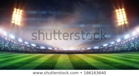 мяч для регби стадион ночь белый синий Сток-фото © albund