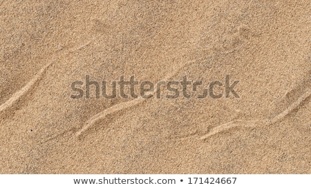 mark of snake in sand dune in the desert Stock photo © meinzahn