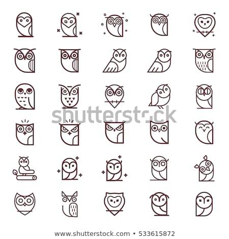 совы черно белые иллюстрация вектора глаза природы Сток-фото © blackberryjelly