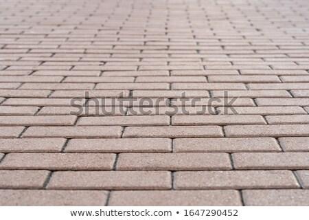 Brick walkway stock photo © njnightsky