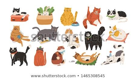 кошки рыбы смешные животного графических Cartoon Сток-фото © blackberryjelly