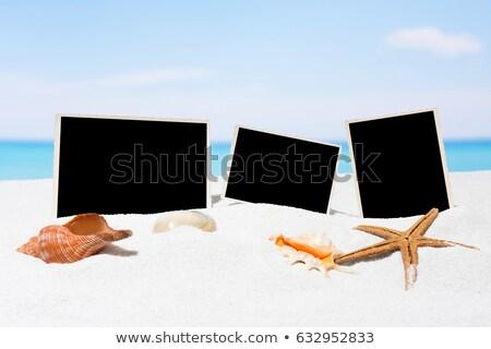 Three Blank photo frames on beach sand Stock photo © stevanovicigor