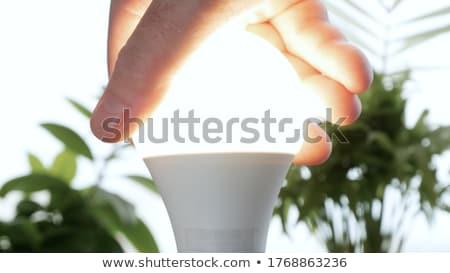 Stockfoto: Gloeilamp · hand · glas · gloeilamp · moderne · lamp