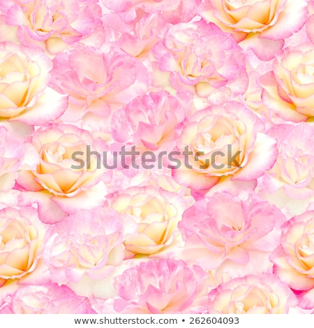 Plenty pink natural flowers seamless background Stock photo © art9858