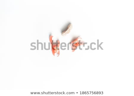 False Teeth Prosthetic Biting Toothbrush on White Stock photo © hd_premium_shots