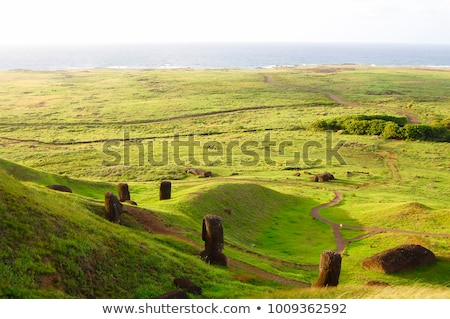 Sculptures of Easter island Rapa Nui Stock photo © ulyankin