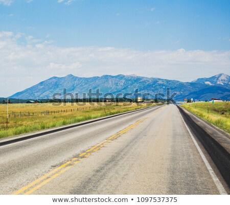 вождения Монтана автомобиль вид сзади зеркало флаг Сток-фото © Bigalbaloo