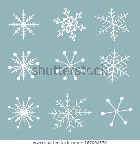 hand drawn snow flakes set stock photo © pakete