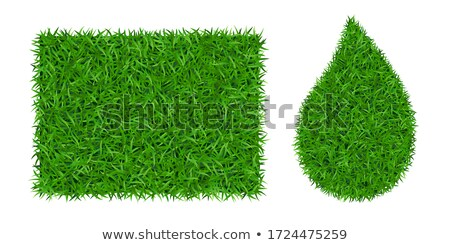 drop on grass and green background stock photo © artjazz