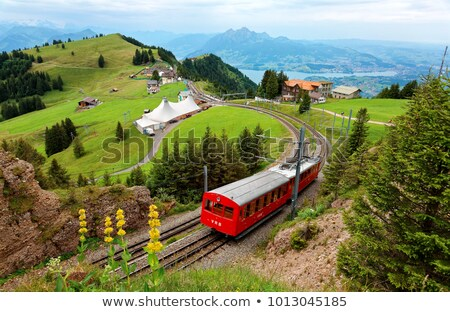 Rails of the railway among summer fields Stock photo © CaptureLight