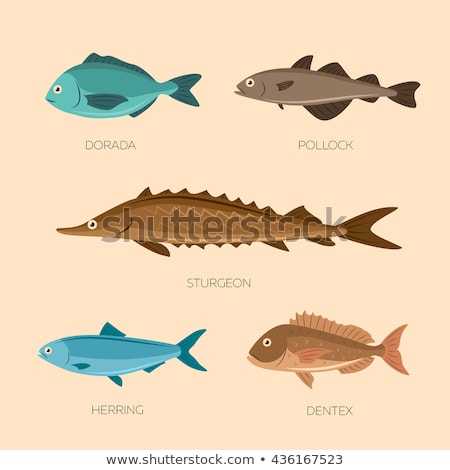 Marines alimentaire poissons illustration gradient Photo stock © ConceptCafe