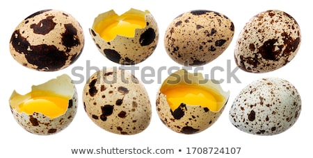 Broken raw quail egg.  Stock photo © user_11056481