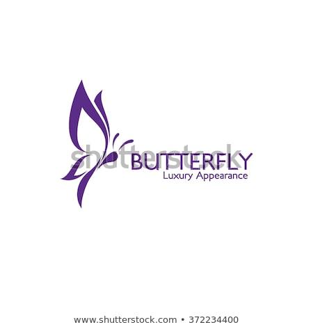 borboleta · ícone · vetor · colorido · logotipo · design · de · logotipo - foto stock © ggs