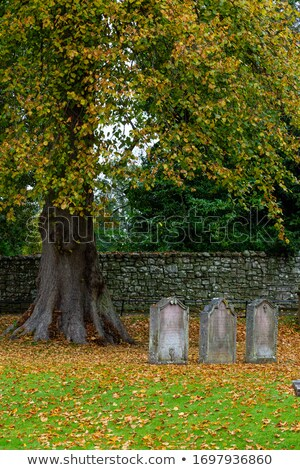 Scottish Grave Marker Stock photo © searagen