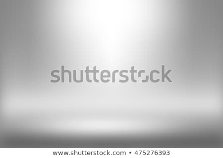 Product Showscase Spotlight Background - White Clear Photographer Studio Stock photo © Loud-Mango