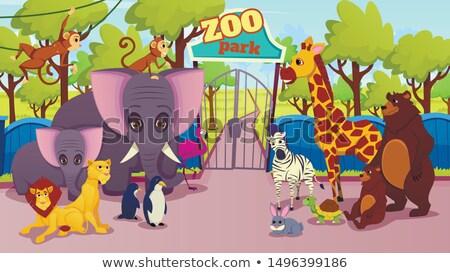 Dieren permanente dierentuin entree vector stijl Stockfoto © curiosity