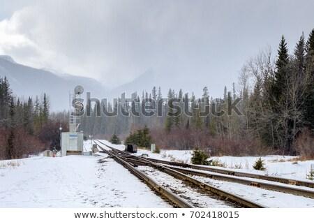 Stock photo: railroad switch in winter
