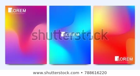 Colorido gradiente fluido projeto negócio Foto stock © SArts