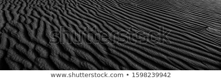 empreinte · sable · Homme · plage · de · sable · homme · nature - photo stock © ruslanomega